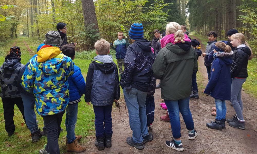 Hexen in Sundhagen - Waldtour
