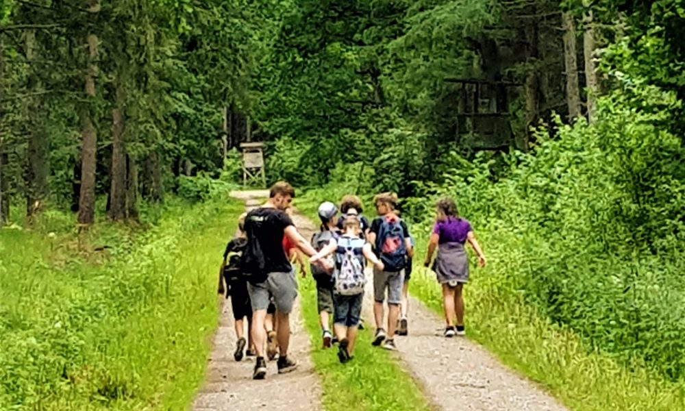 Kindercamp - Wald